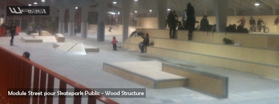 Modules pour Skatepark